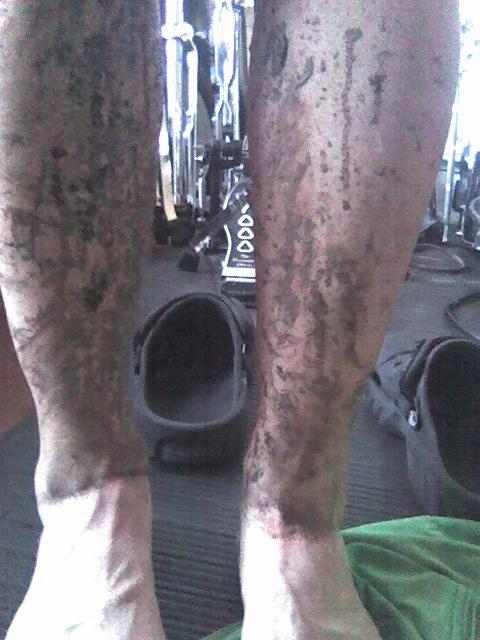 post mud diving